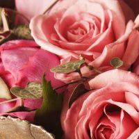 Роза Ланина